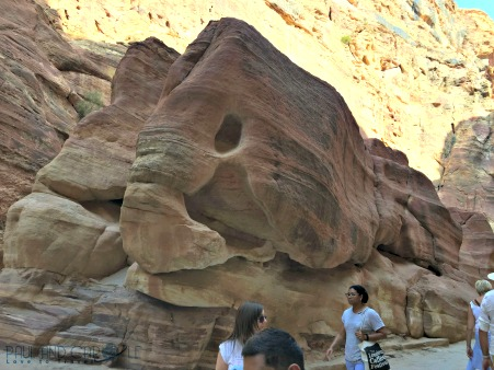 Visiting Petra Jordan,A fish shape carved into the sandstone by years of water erosion. #petra #wondersoftheworld #roseredcity #jordan #visitingpetra #paulandcarole