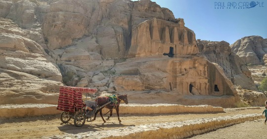 a horse and cart on route to the treasury #lostcityofpetra #wondersoftheworld #paulandcarole #travel #blog