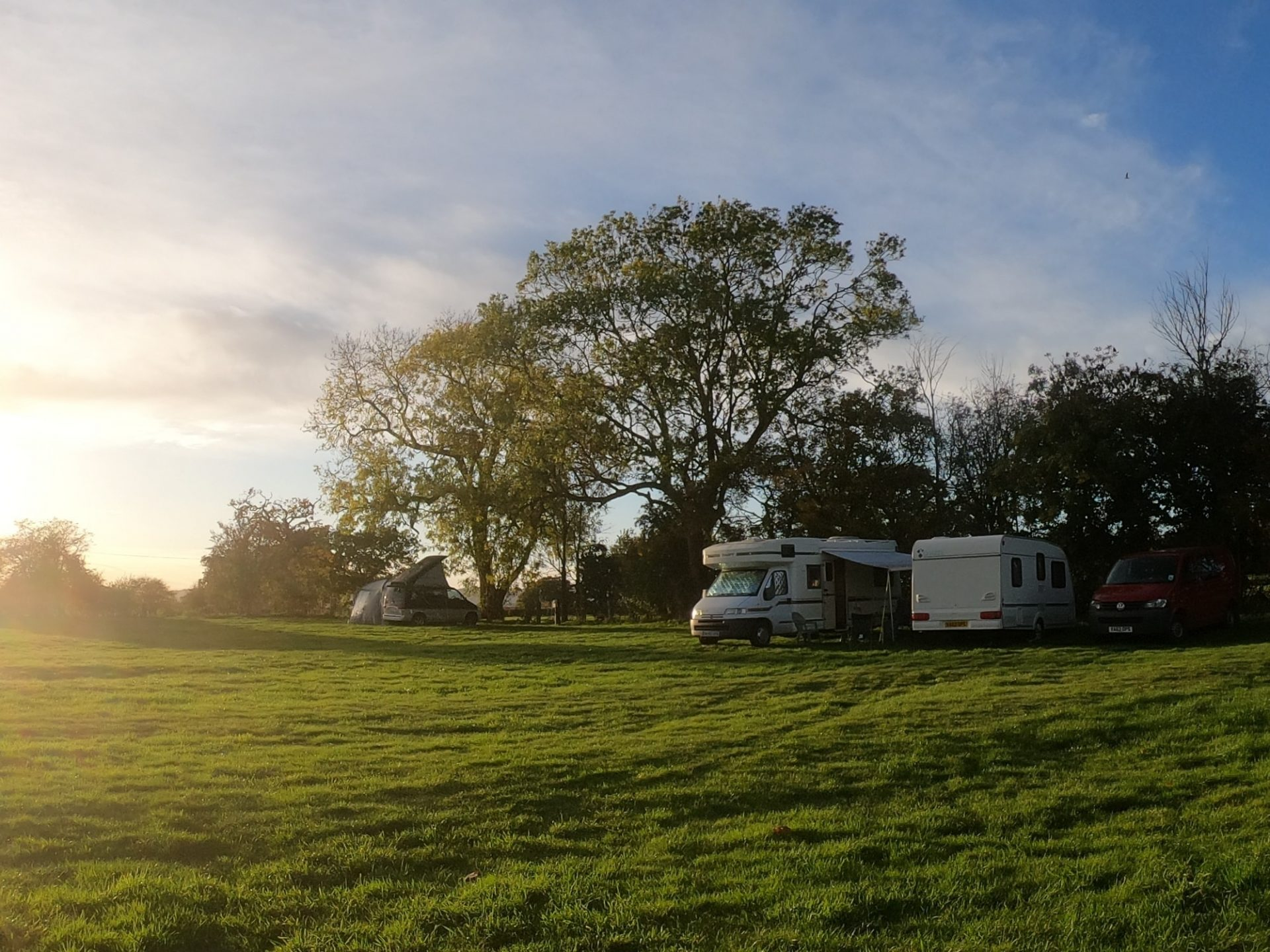 pitch at Drum and Monkey Pub campsite